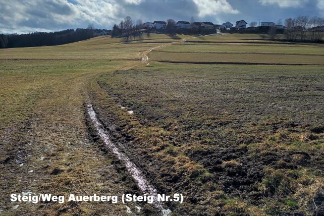 03-auerberg-steig-nr.5.jpg